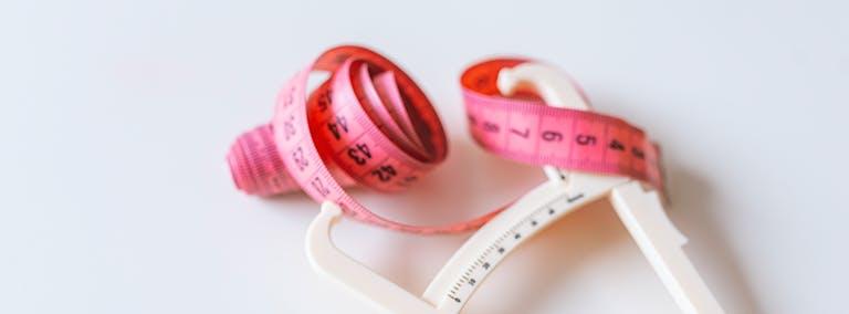 Alles over je vetpercentage